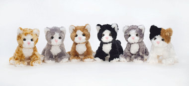 Mischievous Cats, 6 diff.